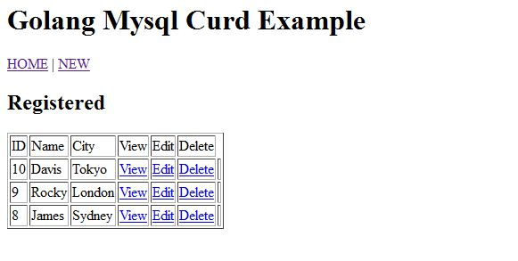 Example of Golang CRUD using MySQL from scratch