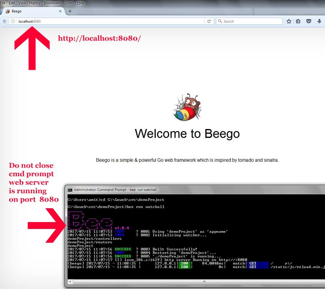 beego demoProject